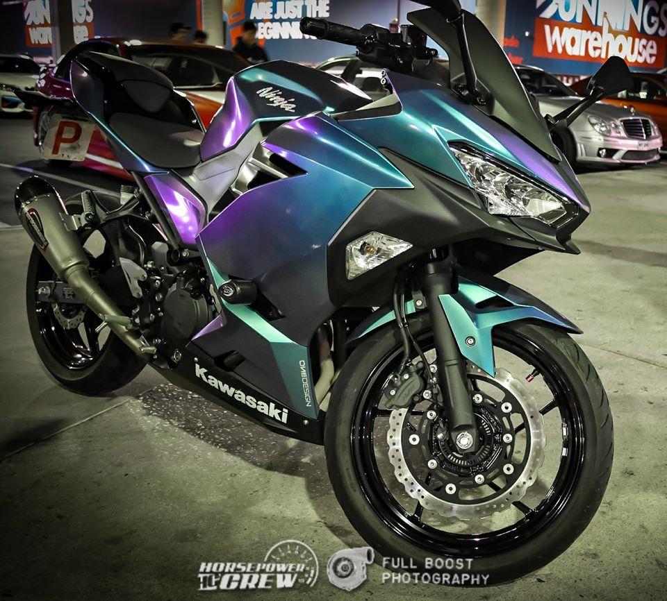 purples-008