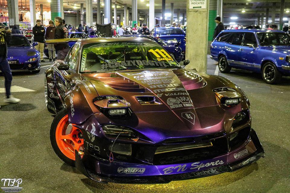 purples-021